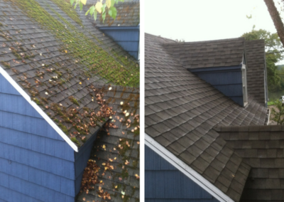 Roof Cleaning / Moss Removal