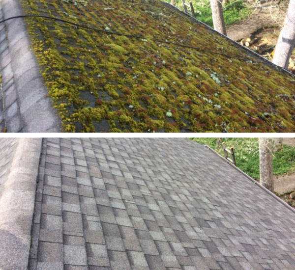 Composite Roof Cleaning Service By Referred Roof Cleaning